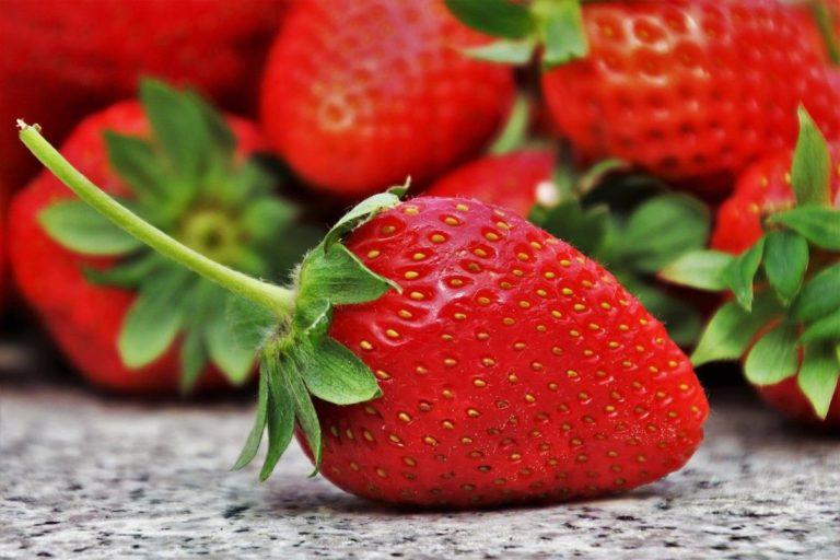 Jak wybrać odpowiednie diety?