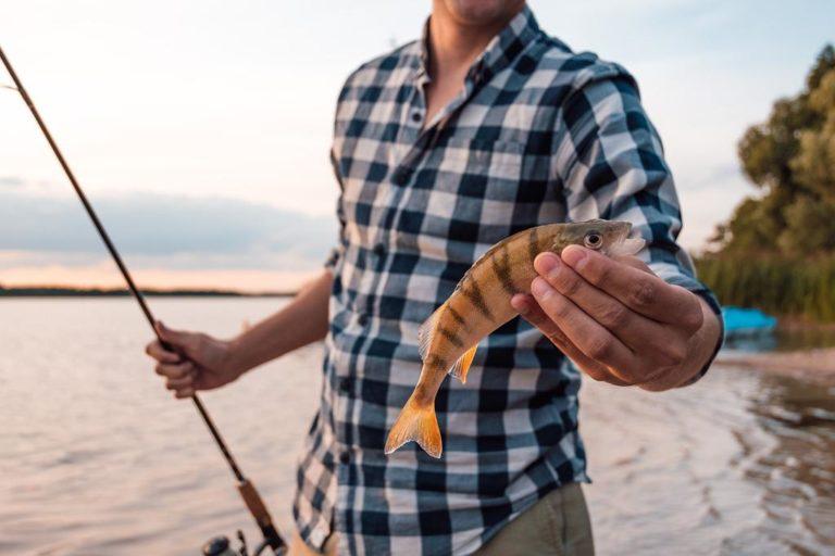Jak sprawić żeby ryby brały nam zawsze?