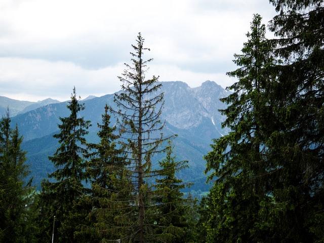 Z jakich miejsc noclegowych powinniśmy korzystać będąc w górach?